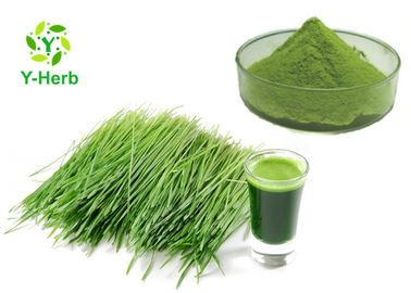 Wheatgrass Vegetable Extract Powder Green Wheat Grass Juice Concentrate Powder