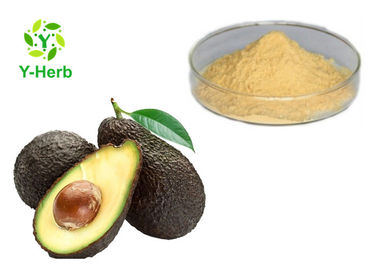 Avocado Powdered Fruit Juice Concentrate Avocado Seed Leaf Extract Capsules Powder