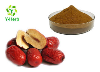 100% Concentrate Chinese Red Date Fruit Exract Water Soluble Wild Jujube Powder