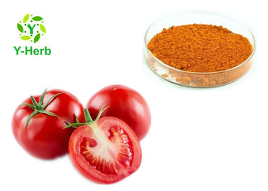 Raw Vegetable Extract Powder AD Spray Dried Dehydrated Tomato Powder