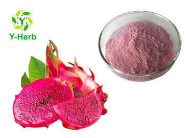 Spray Drying Dragon Fruit Powder Fruit Juice Concentrate Vietnam Pitahaya Extract