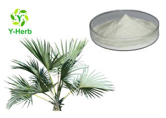 Fatty Acid Saw Palmetto Extract Powder Serenoa Repens Fruit Seed Oil 25% 45% 85%