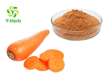 Organic Vegetable Extract Powder Bulk Dehydrated Dried Carrot Fiber Powder