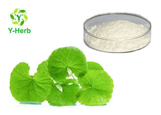 464-92-6 Centella Asiatica Extract Powder Asiaticoside 40%-95% Asiatic Acid 95%