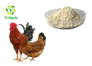 Feed Grade Thermostable Phytase Powder Enzyme For Livestock Additive CAS 9001-89-2